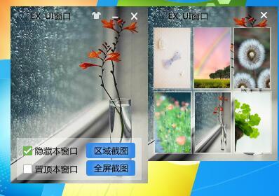EXUI窗口截图工具源码